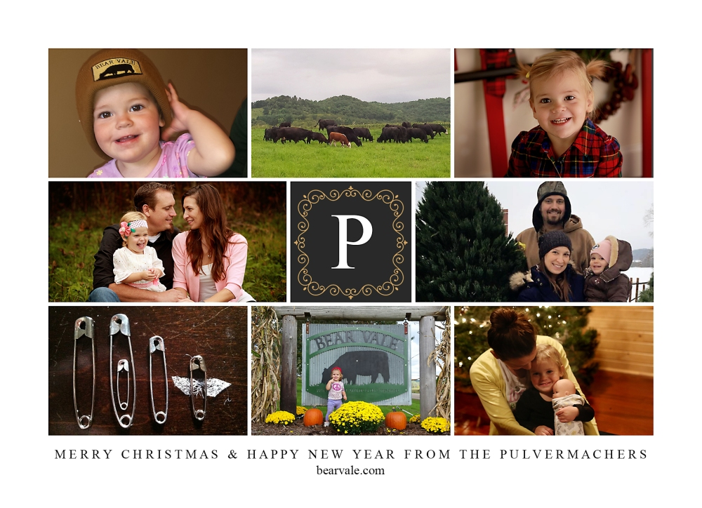 2016-christmas-card_photo-collage